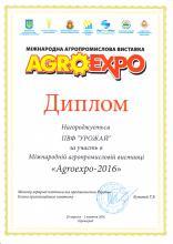 AgroExpo-2016